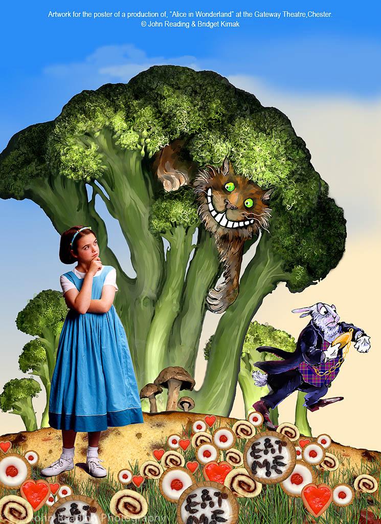 Alice-Poster-1024-1440©JR
